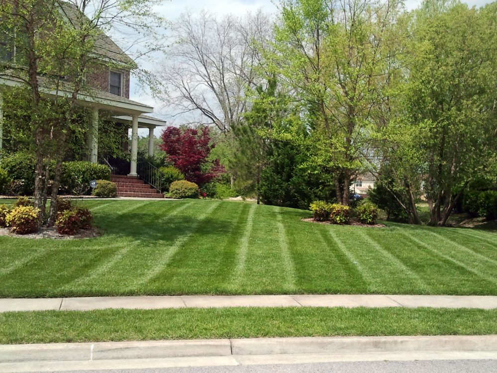 Guelph Lawn Maintenance