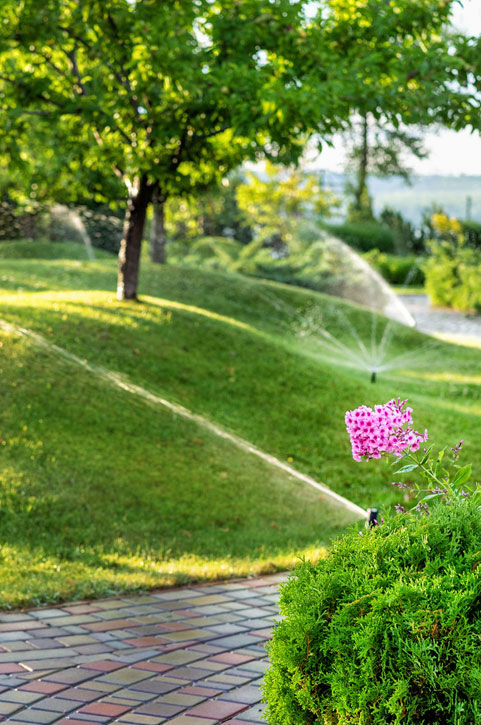 Guelph Lawn Care
